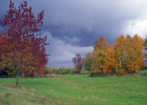 The foliage display around Lac Brome was spectacular
