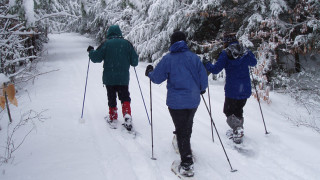 All you need to go all winter is one good pair of snowshoes, but which ones are right for you? (Tim Jones/EasternSlopes.com)