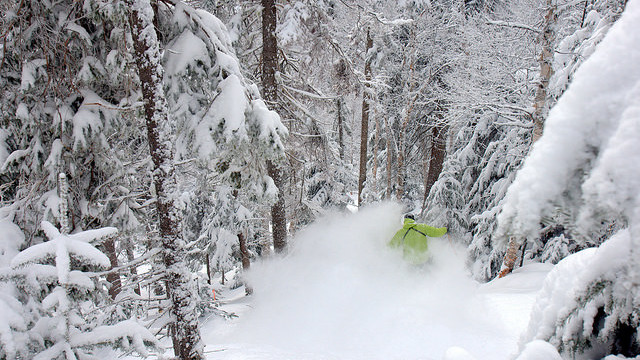 Powder Nirvana awaited on a guided backcountry ski adventure at Le Massif (Le Massif)