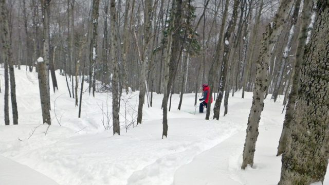 Even at lunchtime, there's still plenty of fresh in BMOM's glades. For $20, it's hard to beat! (EasternSlopes.com)
