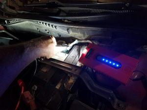 Weego 22 flashlight